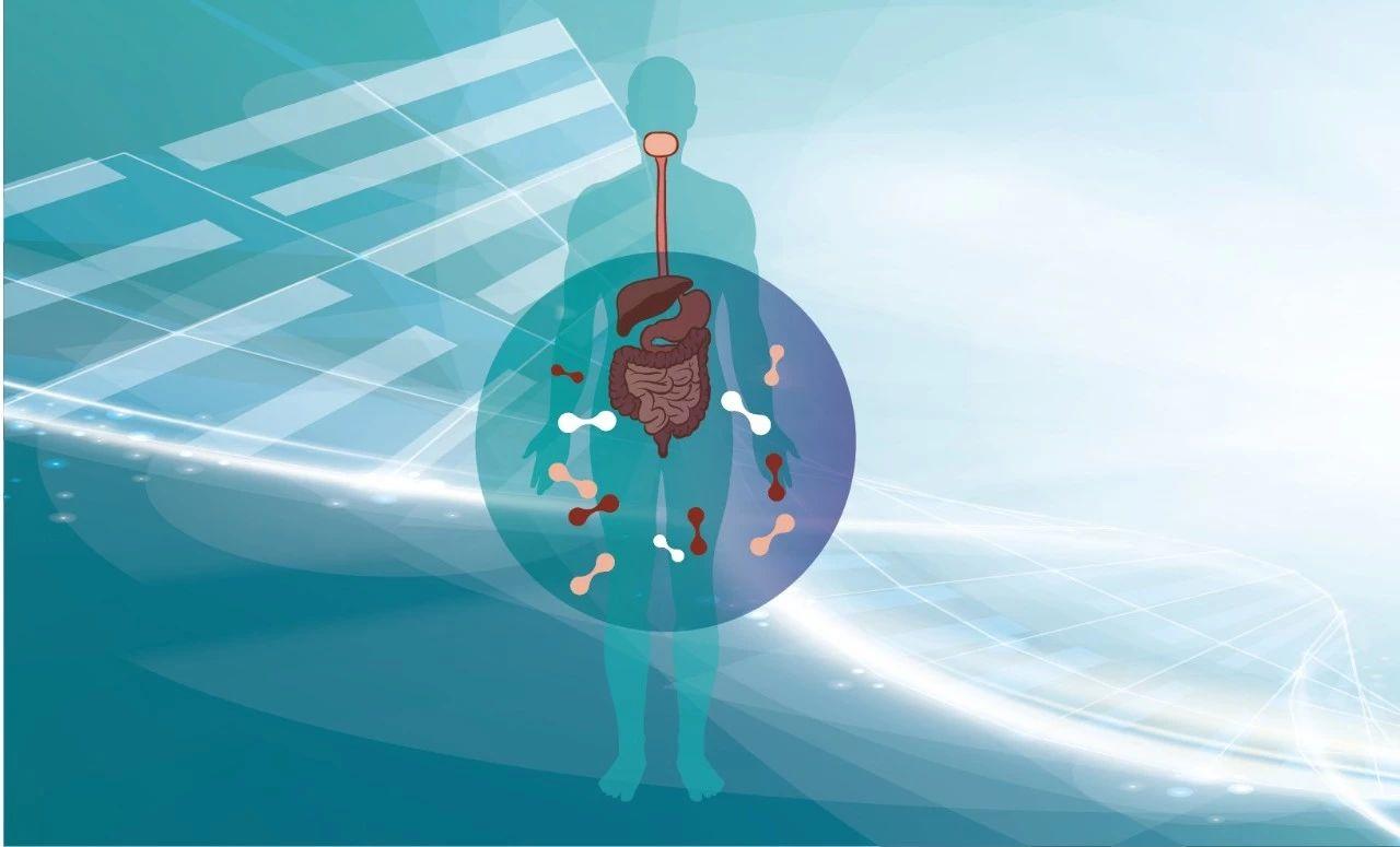 酵素可以调节肠胃的功能,但酵素不仅仅是酶!