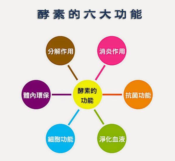 一阳生酵素调整身体的四大阶段,你在哪个段?