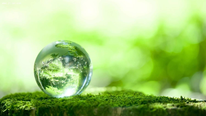 环保酵素有什么用处?