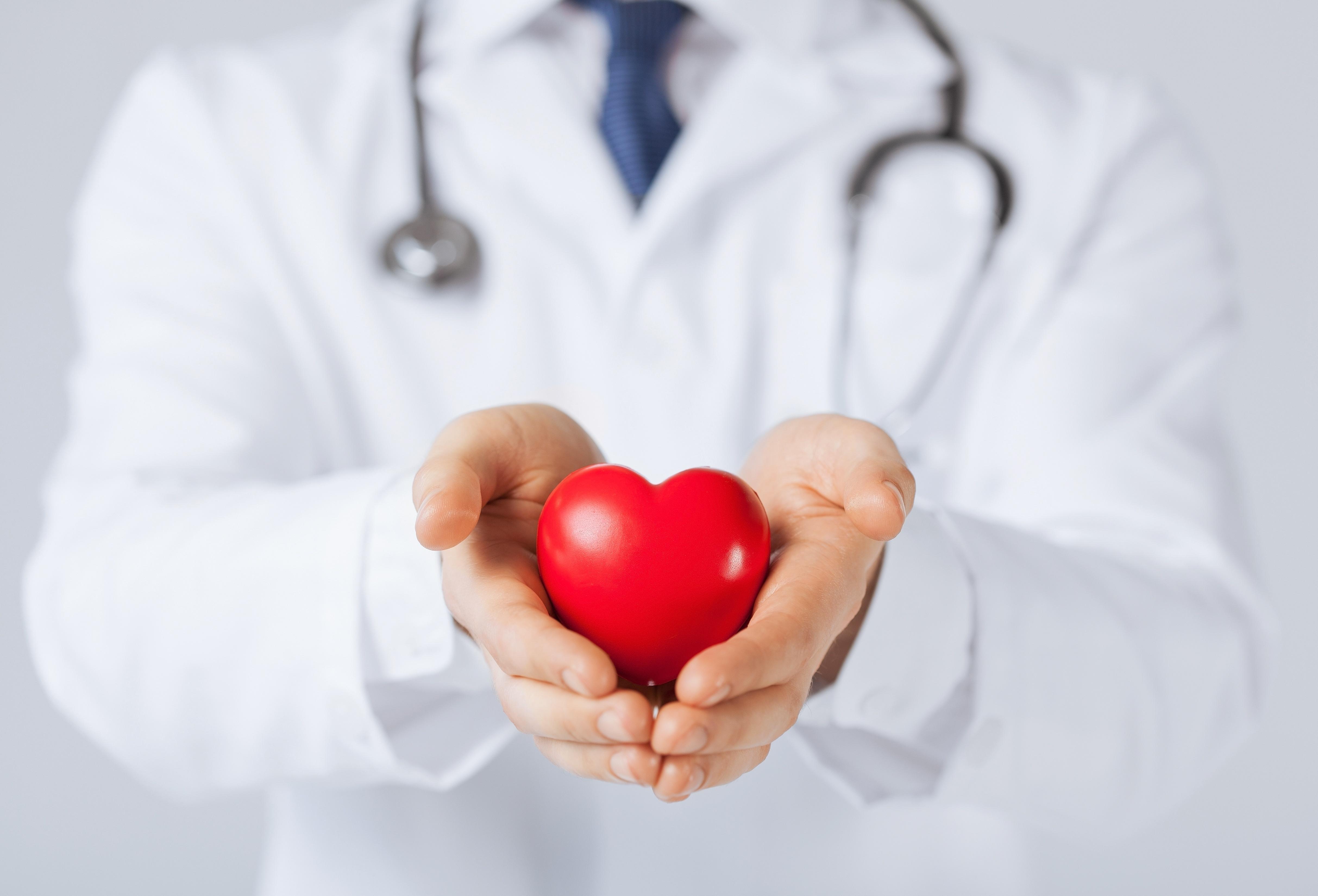 酵素对心、肝、肾、脾、肠的功效