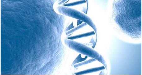 TPP1酵素药物被用于罕见病中