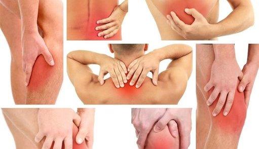 """""""发炎是疾病的元凶""""酵素能改善机体的健康状态"""