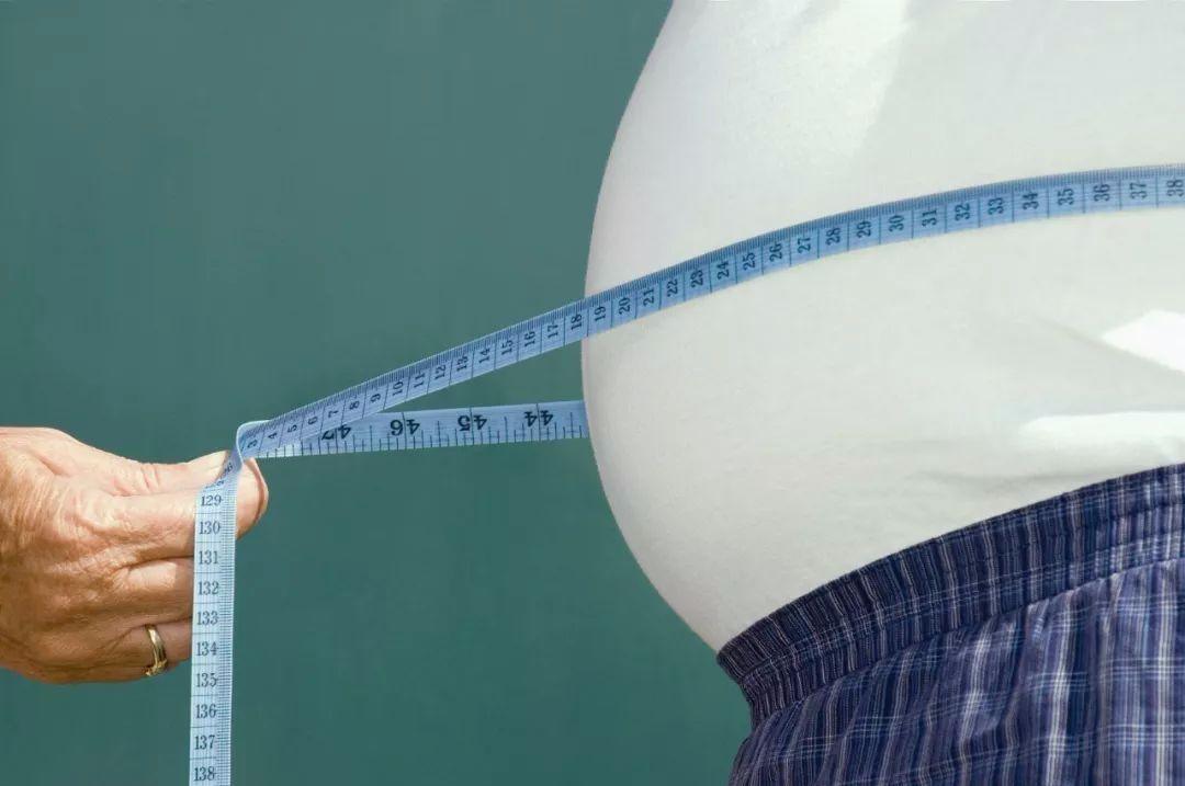肥胖不仅会影响美观,还影响健康