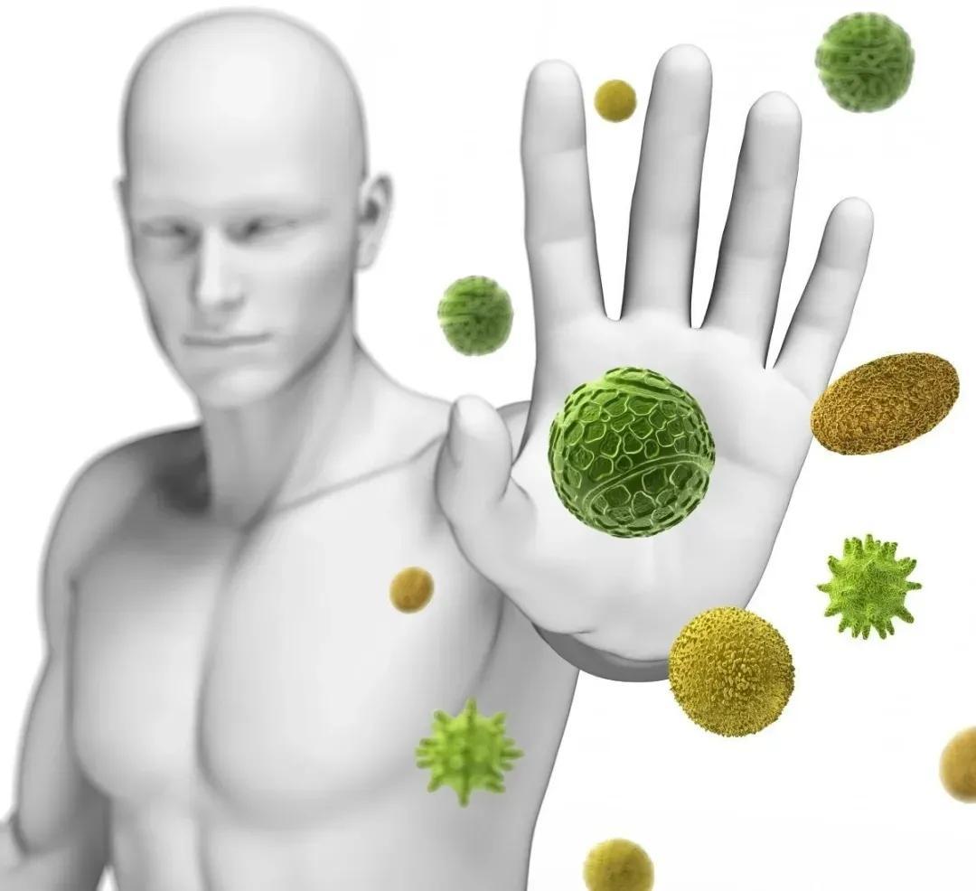 吃益生菌能提高免疫吗