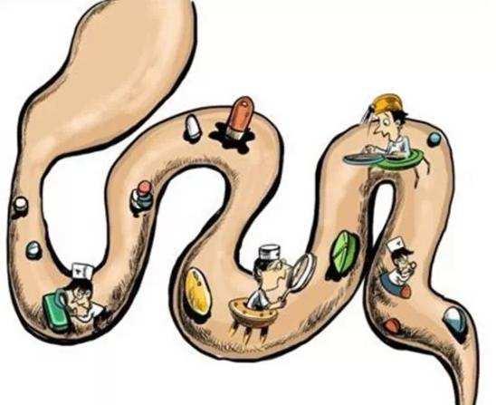 什么是肠道老化问题?