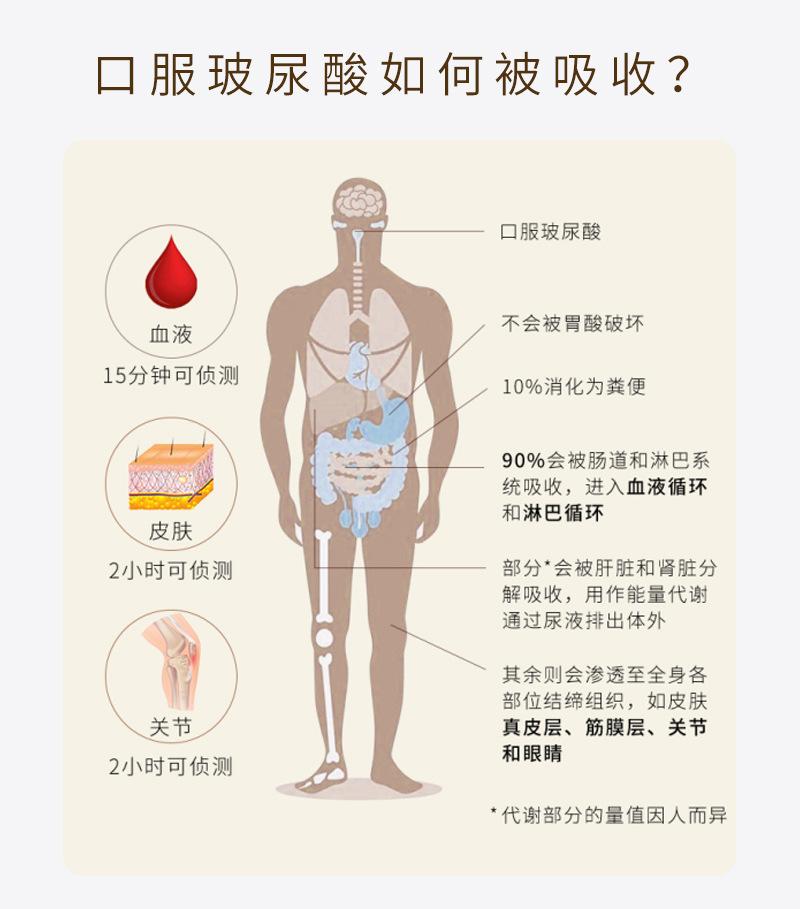 口服玻尿酸原理